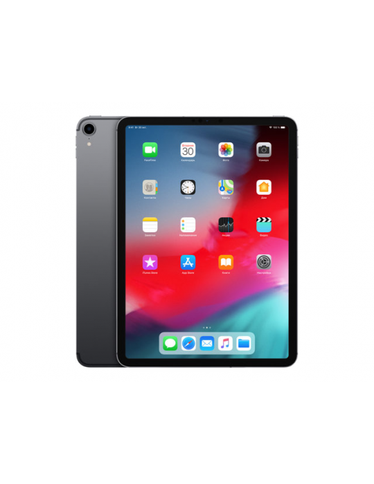 Tablet Apple iPad Pro WI-FI 11 Pulgadas 256GB Gris Espacial