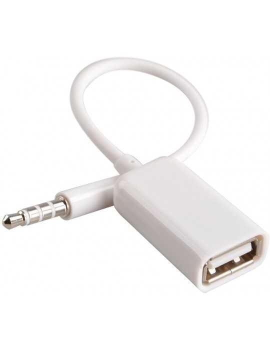 Adaptador AUX JACK Macho a USB 2.0 Hembra